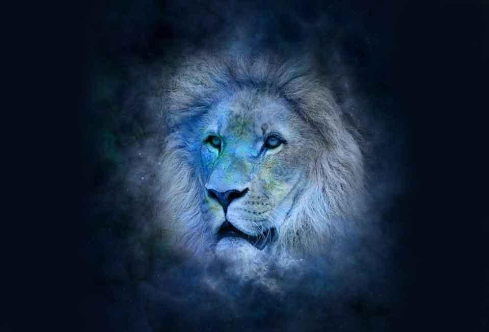 Lua Nova a 0º de leão no dia 23 de Julho de 2017