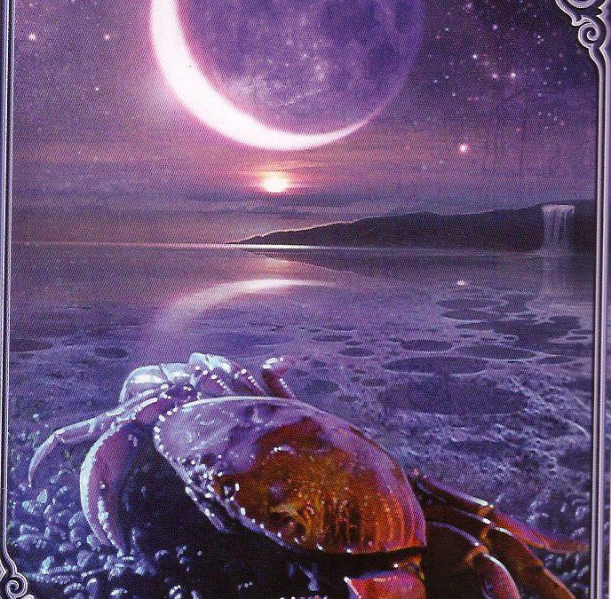 Lua Nova em Caranguejo – Uma nova estrutura emocional e\ou familiar!